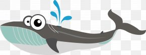 Whale Vector - Baleen Whale Euclidean Vector PNG