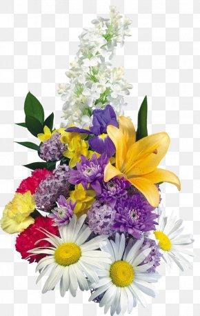 Chrysanthemum - Best Borders Picture Frames Purple Flower PNG