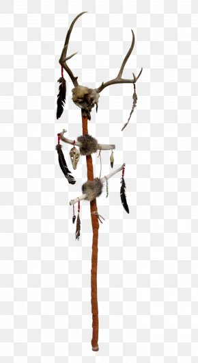 Walking Stick - Walking Stick Native Americans In The United States Bastone PNG