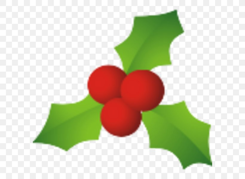 Common Holly Candy Cane Santa Claus Mistletoe Christmas, PNG, 600x600px, Common Holly, Aquifoliaceae, Aquifoliales, Can Stock Photo, Candy Cane Download Free