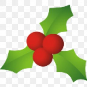 Mistletoe Cliparts - Common Holly Candy Cane Santa Claus Mistletoe Christmas PNG