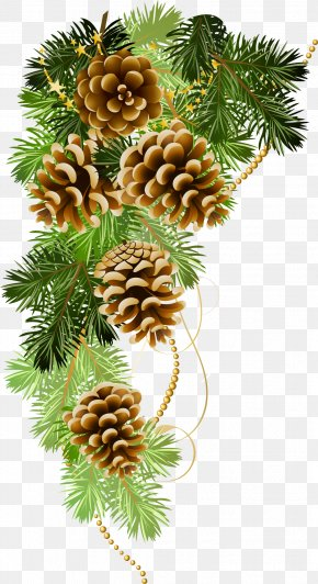 Pine - Christmas Ansichtkaart Holiday Greeting & Note Cards New Year PNG