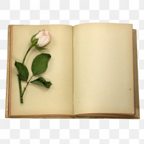 Flower Book - Book Rose Stock Photography Clip Art PNG