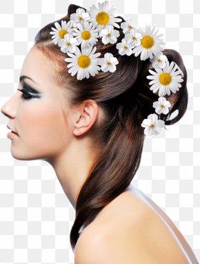 Hair - Hairstyle Beauty Parlour Fashion Hair Care PNG