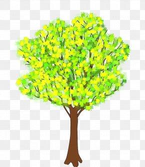 Tree - Tree Spring Clip Art PNG