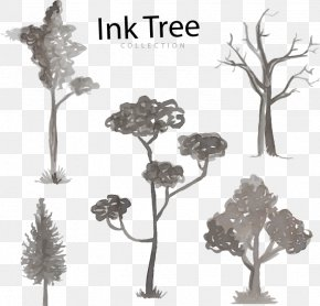 Trees Watercolor Pen - Black And White Tree Watercolor Painting Twig Illustration PNG