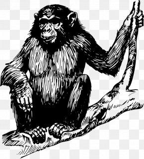 Monkey - Chimpanzee Ape Drawing Primate Clip Art PNG