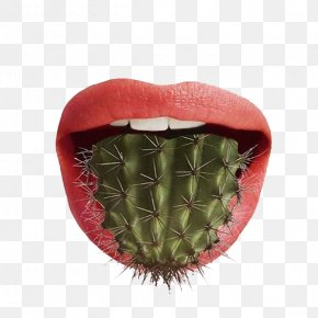 Cactus Tongue - Pun Graphic Design Food Art PNG