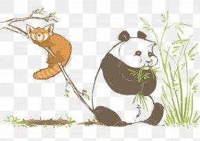 Vector Giant Panda And Panda - Bear Giant Panda Red Panda Illustration PNG