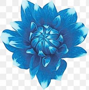 Aquatic Plant Plant - Blue Turquoise Aqua Petal Teal PNG
