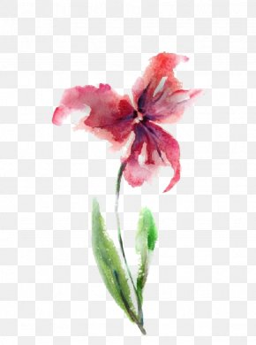 Free Watercolor Hand-painted Flowers Pull Material - Watercolour Flowers Watercolor: Flowers Watercolor Painting Drawing PNG