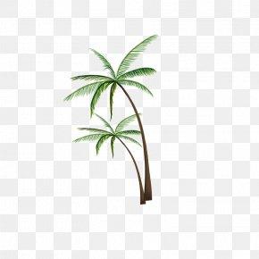 Coconut Tree Pattern - Coconut Tree Clip Art PNG