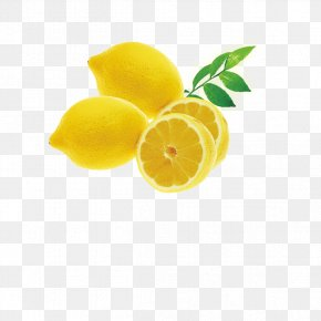 Fresh Lemon - Lemon High-definition Television Display Resolution High-definition Video Wallpaper PNG
