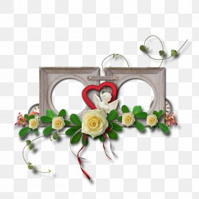 Valentine's Day - Valentine's Day Picture Frames Flower Photography PNG