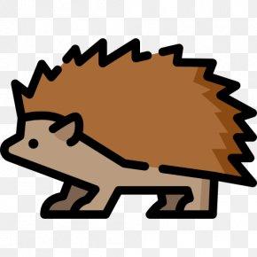 Hedgehog - Hedgehog Royalty-free Illustration Euclidean Vector PNG