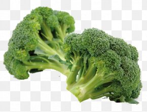 Green Cauliflower - Broccoli Eating Vegetable Sulforaphane Chinese Cabbage PNG