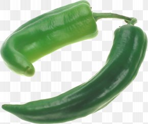 Pepper Image - Bell Pepper Chili Pepper Serrano Pepper Poblano Jalapeño PNG