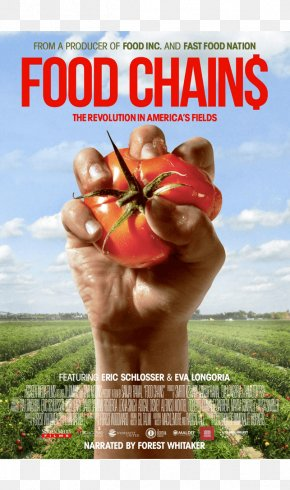 United States - Fast Food Nation: The Dark Side Of The All-American Meal United States Food Chain PNG