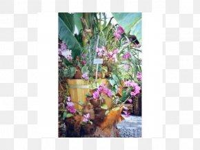 Design - Floral Design Fauna Flowering Plant PNG