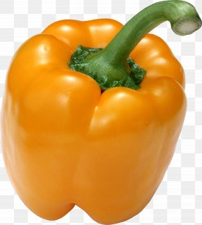 Pepper Image - Bell Pepper Organic Food Chili Pepper Pimiento PNG