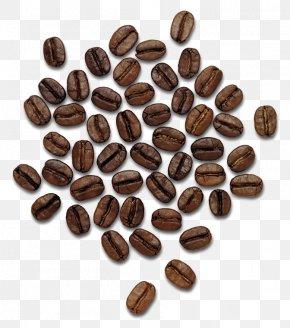 Coffee Beans Image - Coffee Thailand Praline Hazelnut Cocoa Bean PNG