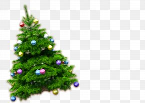 Christmas HD Free Matting Material - Christmas Tree High-definition Television PNG