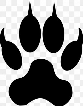 Cat Paw Drawing - Dog Panthera Paw Clip Art PNG