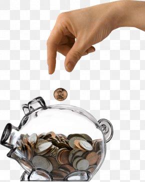 Save Money Into The Transparent Pig Piggy Bank - Saving Money Debt Funding Bank PNG