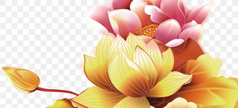 Mid-Autumn Festival Flower Chinese New Year, PNG, 1756x800px, Midautumn Festival, Chinese New Year, Cut Flowers, Dahlia, Floral Design Download Free