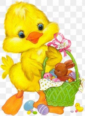 Duck - Easter Bunny Chicken Clip Art PNG