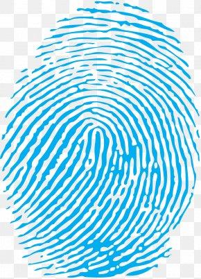 Fingerprint - Fingerprint Clip Art PNG
