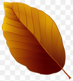 Autumn Leaf Clipart Image - Image File Formats Filename Extension Computer File PNG
