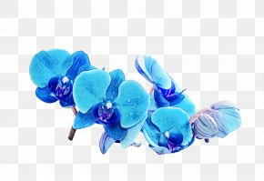 Electric Blue Fashion Accessory - Blue Turquoise Aqua Cobalt Blue Petal PNG