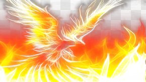 Flaming Phenix - Phoenix Download High-definition Video Wallpaper PNG