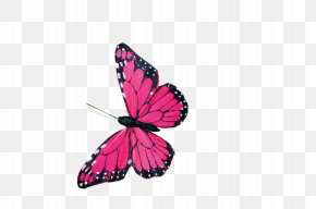 Butterfly - Butterfly Watercolor Painting Clip Art PNG