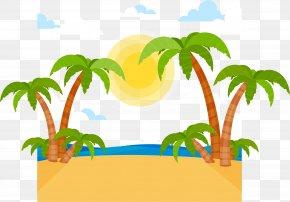 Summer Beach Beach - Euclidean Vector Arecaceae Beach Tropics PNG