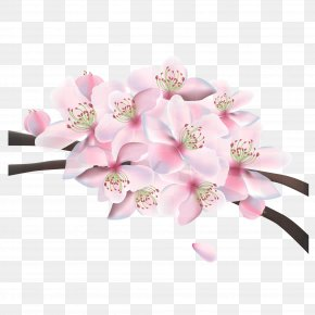Pink Japanese Poster Material - Pink Floral Design Cherry Blossom PNG