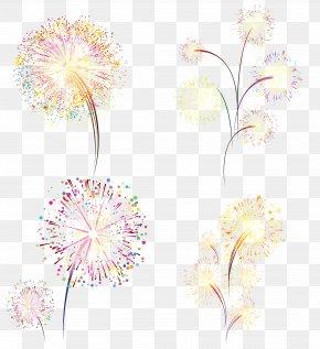 Color Romantic Fireworks - Fireworks Firecracker PNG
