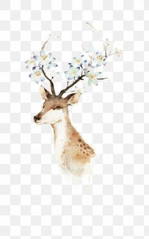 Animal - Deer Watercolor Painting Illustration PNG