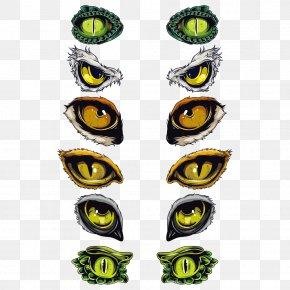 Eye - Euclidean Vector Symbol Eye PNG