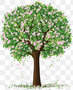 Spring Tree Art Picture - Spring Tree Clip Art PNG