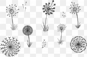 Plant Flowering Grass Hand Painted Flock Flying - Common Dandelion Plant Euclidean Vector PNG