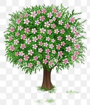 Spring Tree - Tree Shrub Clip Art PNG