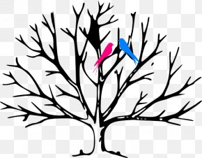 Bird Branch - Coloring Book Tree Leaf Trunk Child PNG