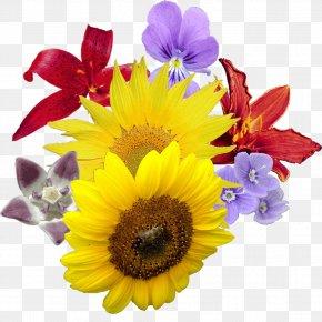 Baby Breath Flower Bouquet - Clip Art Image Flower Bouquet PNG