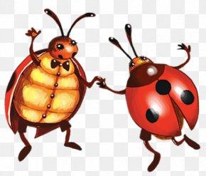 Ladybug - Ladybird Clip Art PNG