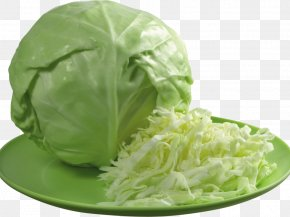 Cabbage - Kapusta Kiszona Duszona Red Cabbage Sauerkraut Brussels Sprout PNG