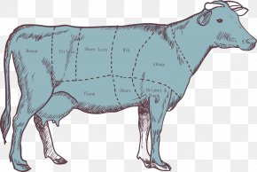 Cattle Parts Segmentation Map - Cattle Calf Beef Meat PNG