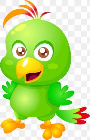 Parrot - Pirate Parrot Cartoon PNG
