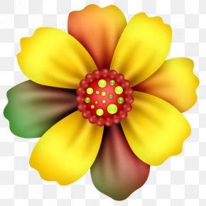 Uma Cama De Flor Colorida - Flower Drawing Image Color Animation PNG